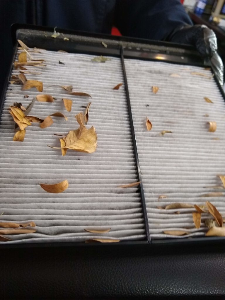 Picture of a dirty cabin filter